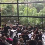 Parte de @Sinfonicacaldas en el Festival música y naturaleza. En el Recinto del Pensamiento https://t.co/vzzGCaHLbk https://t.co/GddXwn3z6l