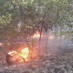 I was just told that the fire in Baldwin County spread 62 acres, but it is now contained. https://t.co/O2hI8WPreW