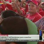 Pdte. Maduro: asuman el tema de las semillas ¿Cómo vamos a estar importando semillas si somos un país privilegiado? https://t.co/ioRBT3i24U