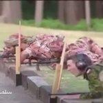 🎥   إنجازات فريق قوات السلطان المسلّحة للرماية.  ••نفتخر ونفاخر بكم دائماً ••      #عُمان ❤️      #تحية_لدرع_الوطن https://t.co/8N27qyprTC