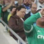 No momento do gol do Moisés, um fato que me chamou a atenção foi esse... Reparem.  #JamaisSeraSoFutebol   Lindão 👏👏💚 https://t.co/ukU8KGL6U2