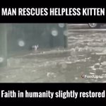 Just slightly 👍👍💕 #kitten #animalcrossing #WednesdayWisdom #cats #petscorner #LOVEARMY https://t.co/eD4dFqIdbM