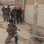 بشجاعةالكرارقاتل الحشد داعش في #الفلوجة و بالروح الحسينيةسنحرر #الشرقاط و #الموصل #الحشد_يدخل_الشرقاط #الحشد_الشعبي https://t.co/8dAGGB0CCR