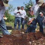 En Kuchel apoyamos las labores de 122 citricultores con 15 mil plantas de naranja para repoblar 222 hectáreas. https://t.co/aDxhXs3QWp