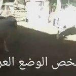 لمن يهمه الوضع العربي https://t.co/N5XLHnNWBx