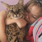 Bila tengah sedih, tetiba kucing naik atas katil. Terus peluk dia kuat2. Siapa selalu buat camni?  🙌🙌🙌🙌🙌🙌🙌🙌🙌🙌🙌🙌🙌🙌🙌🙌🙌 https://t.co/2cLzHVSICL