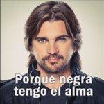 - Oye Juanes y tu por que apoyas eso de la Habana? - ... https://t.co/otuXIioZBN