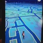 Tenemos MUCHOS pidgeys(y tiempo libre) #DaftPunk #DaftPidgey #PokemonGO https://t.co/Drd0yjd4tm