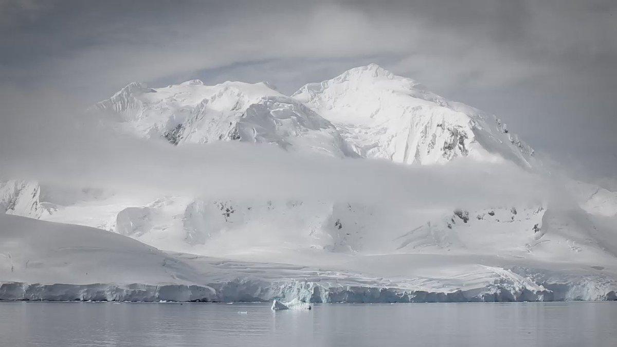 Con @vida_silvestre creamos #UnAnilloMas. Si la Antártida cambia, cambia todo el planeta https://t.co/3TsOgLAIgI https://t.co/vEhaHrYLgS