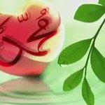 جمعتكم طيبة 🌹   بالاستغفار وبالصلاة على النبى شفيعنا .. وبقراءة سورة الكهف التى تنير مابين الجمعتين 🍁 #يوم_الجمعه https://t.co/2kXp4Q84MZ