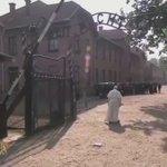 En este video revivimos la conmovedora visita de Pontifex a #Auschwitz en Polonia #acicracovia https://t.co/SmFxkUcr6X