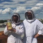We harvested the first jar of delicious honey from our beehives today! 🐝 #macewanu #yegdt https://t.co/VPbOjeEX8A