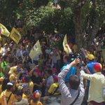 Merida se desbordó con el revocatorio . Los merideños darán un caudal de votos para revocar a Nicolás Maduro https://t.co/JzhteA6wSw