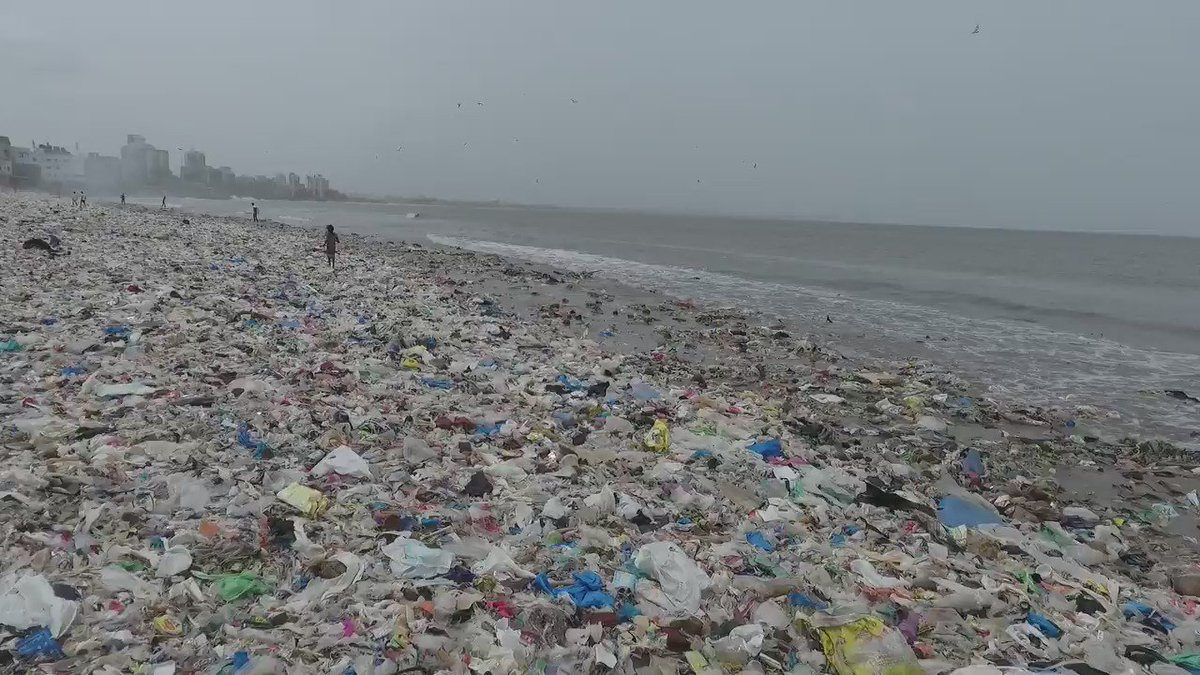 This is shocking. We must keep #MumbaiBeachClean for her. Please share. https://t.co/4yfYXQeMfp