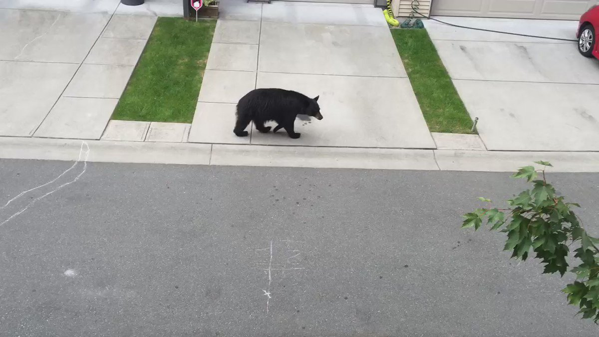 Just had to turn away a single mom & her two kids who came looking for food. #vancouver #Coquitlam https://t.co/gLKQbasJFM