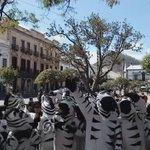 #SucreAhora Por falta de pago, Cebras de Sucre deciden retirarse del proyecto por falta de pago de bono de Bs 600. https://t.co/gBEYEERak7