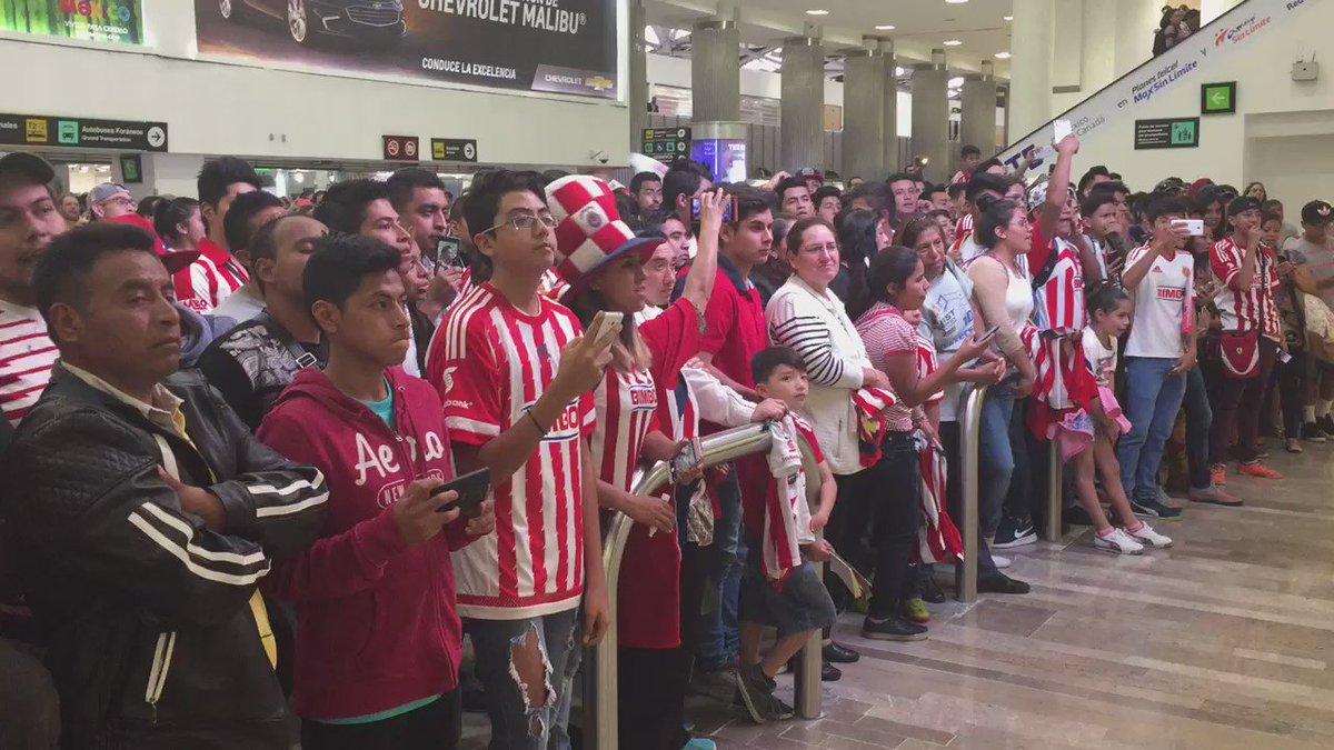 Así espera a @Chivas un buen número de aficionados en la T1 del #AICM...Detalles en @TVCDeportes https://t.co/bDTdXx9sa8