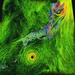 【News Up 台風10号の動きを可視化】非常に強い勢力を保ち、今後、本州に近づくおそれがある台風10号。いったん西に向かってからUターンという異例の動きを見せています。警戒を「https://t.co/49BTsYKuul? https://t.co/SbfhnOvpPU