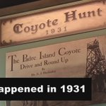 Coyotes in SPI? GONE NOW, but this is one of the many things at the SPI Historical Museum. https://t.co/IjegD9tIvv https://t.co/obHoPASSQP