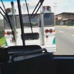 """Reporta @Bryan01miranda que sigue el desorden en las calles. Informa mal manejo de conductor de """"diablo rojo"""" https://t.co/b6DLhQE0fd"""