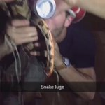 Scotty killed a snake last night at the party then this happened ... #SnakeLuge https://t.co/35hWNqNNvn