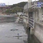 【震災で地盤下がった地域 高潮の被害に警戒を】 東日本大震災で地盤が下がっている地域は高潮による浸水被害が大きくなるおそれがあります #台風10号 https://t.co/Hg6kqH5118