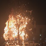 Someone inadvertently set the one of the Toomers Oaks on fire. Its out now, but all the toilet paper is burned off https://t.co/0cSGRUBEFZ