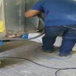 מבצע החילוץ של גור החתולים: הוצא מהבור באמצעות שואב אבק https://t.co/sOo6cbkECD