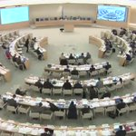 Euro-Med Monitors statement during the 33rd session of #HRC33 https://t.co/qFMNf5sl2V