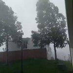 Fuerte lluvia en San Miguel Petapa, reportan caída de árboles. Video Sabrina de Torres /@ClimaenGuate  https://t.co/ryWMk0CCqj