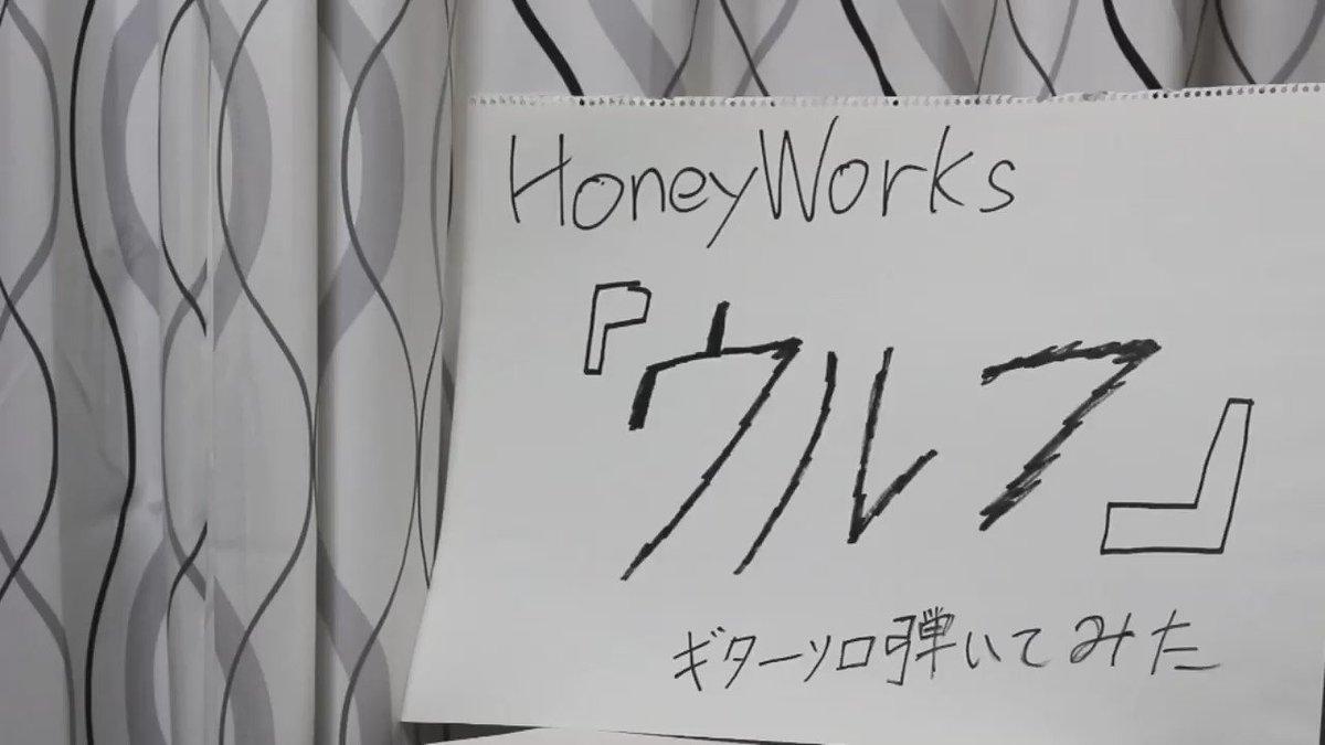 【ウルフ/CHiCO with HoneyWorks】ㅤギターソロ弾いてみました!!初一眼レフです。どうぞよしなに(_