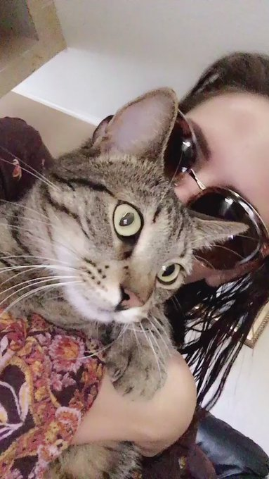 Sooooo happy to be with Fritzy 😽💓 https://t.co/Aw36d8KcsK