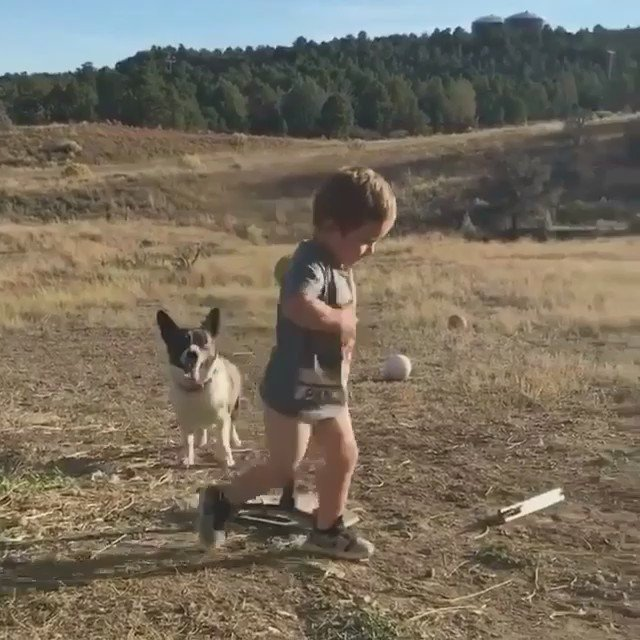 Two buddies playing the best game on Earth ⚾️�� https://t.co/wEMhtProPG