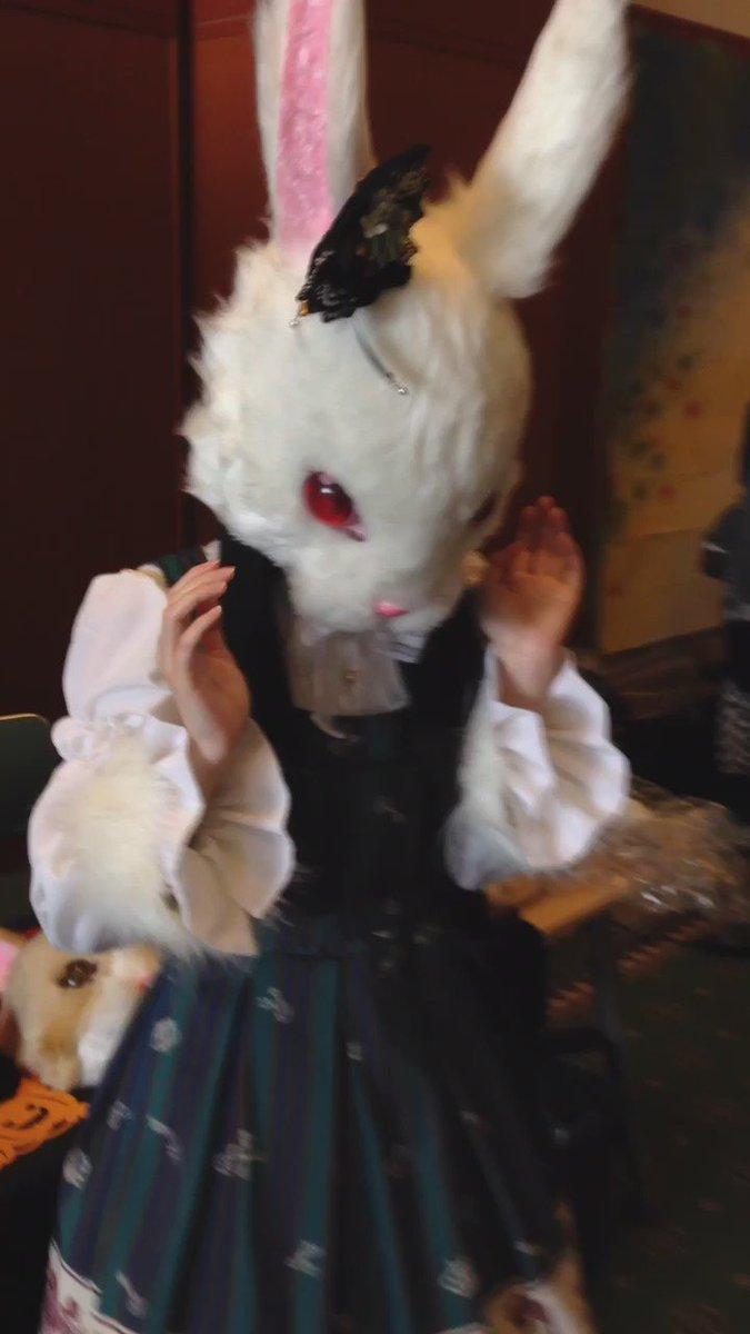 ♫うーさぎ うーさぎ作ぅーくーれ うーさーぎーこーれで俺達ィもケーモーおーとーこー2014年ハロウィン時のウサ様々な衣装
