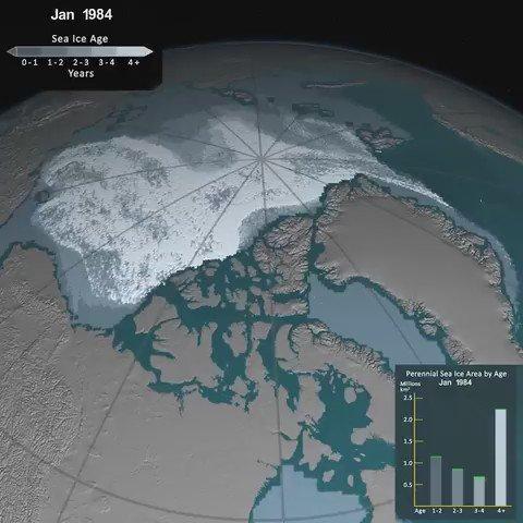 Évolution de la glace de l'Arctique: mars 1984 - mars 2016  (via @Kitri1) https://t.co/EKnj7wcKpE