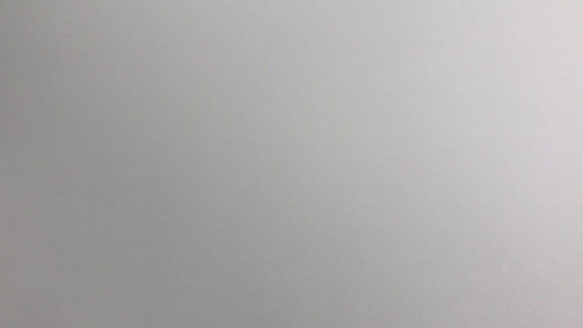「トリガール!」金髪イケメン頂きますっ🍴いきなりのムチャブリに応えて頂きました!! #高杉真宙 #トリガール #高橋圭