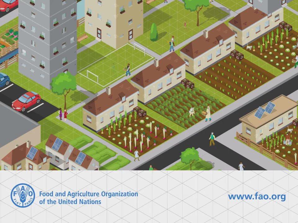 NZ_Soil_Soc photo