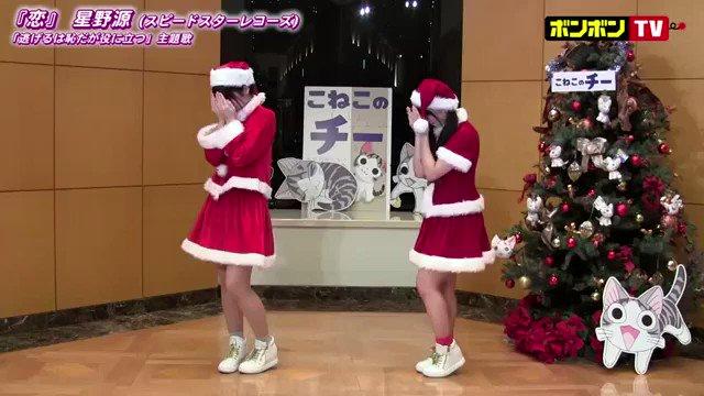 史上初?猫と「恋ダンス」踊ってみました🐈💗#猫の日#恋ダンス#こねこのチー#双子ダンス#踊ってみた