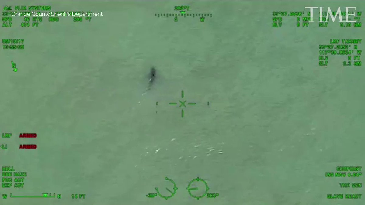 Helicopter crew warns paddleboarders they're 'next to approximately 15 great white sharks' https://t.co/frf88mXSIn https://t.co/Zrm9onWhUK