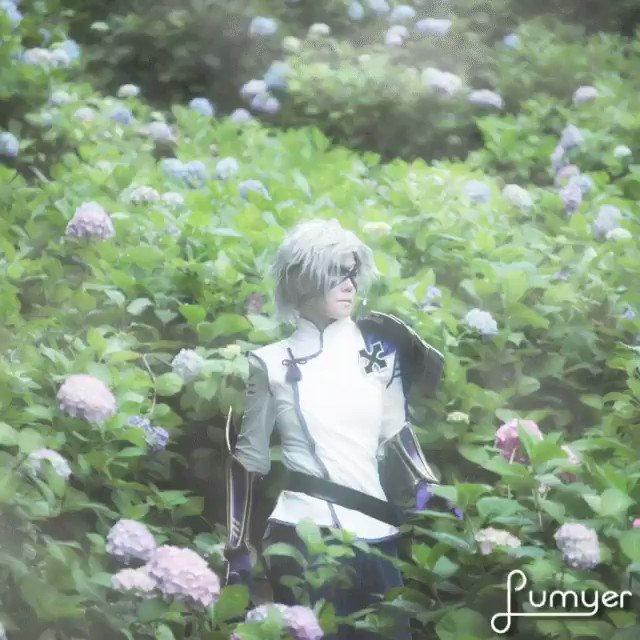 侑さんからリクエスト頂いたので、アプリ画像で半兵衛をもう一枚ζ・×・ζ♪「 朝霧と紫陽花と軍師 」撮影 : 侑さん ()