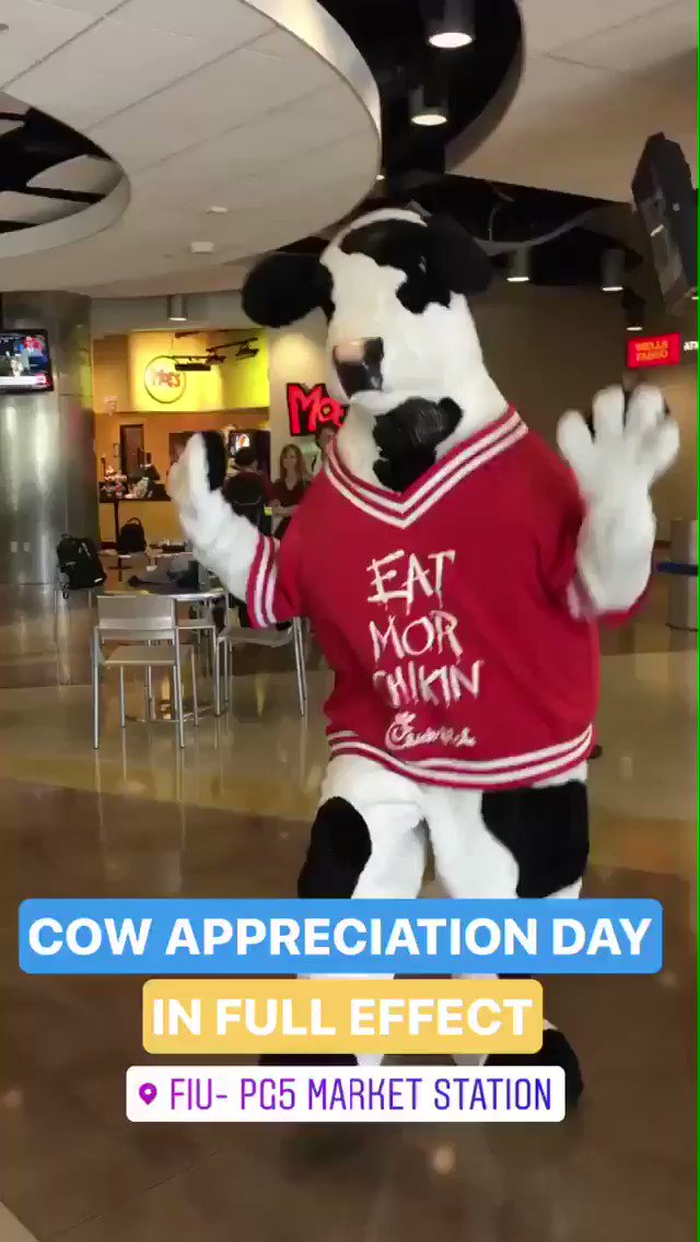 RT @FIU: Current situation in PG5. #CowAppreciationDay @ChickfilA https://t.co/PfalPohSZ0