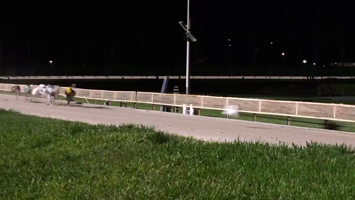 Derby Lane