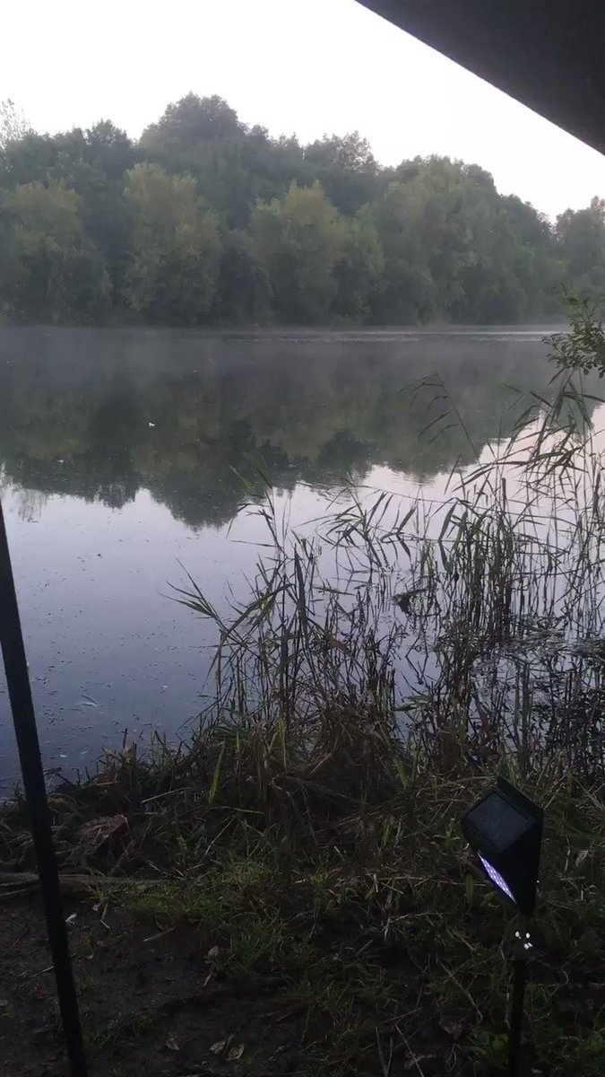 Waking up to this is priceless #carpfishing #<b>Tightlines</b> #qcbaits https://t.co/RJismIvHds
