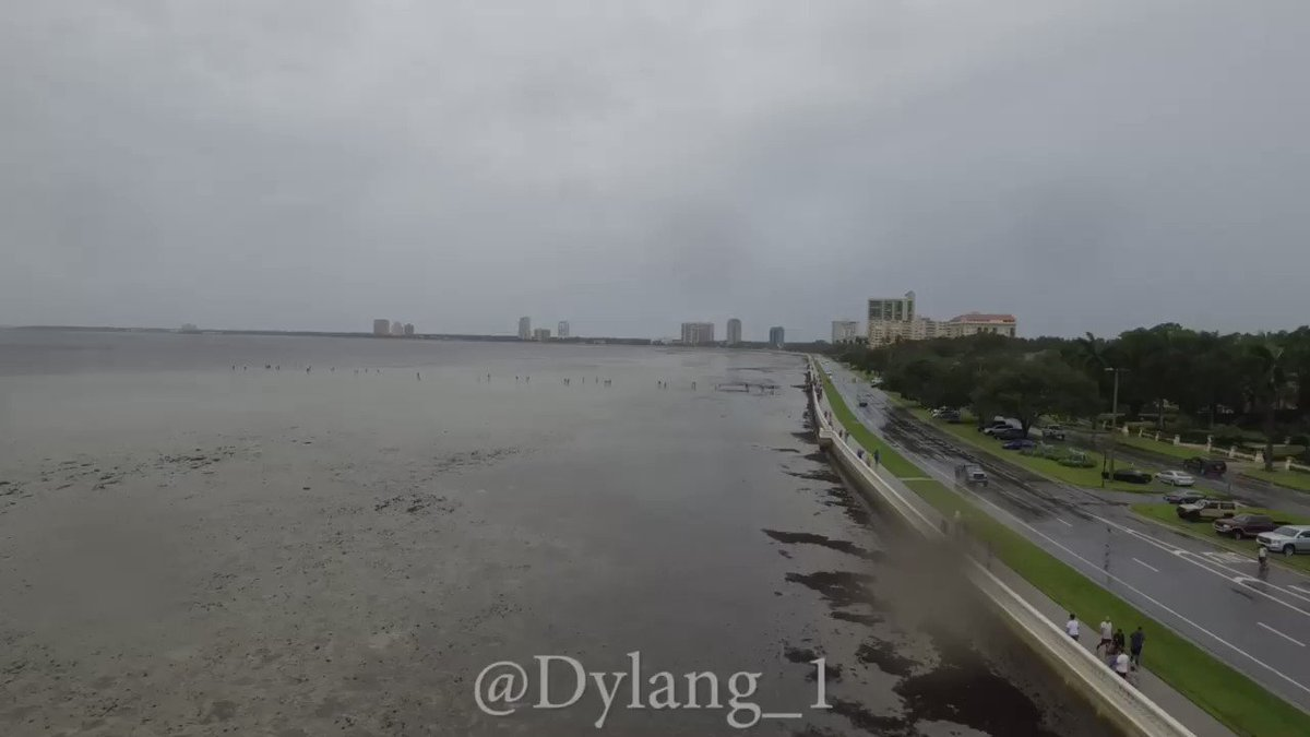 RT @Dylang_1: Drone footage of bayshore drained #irma #IrmaFlorida #tampa #hurricaneimra https://t.co/w7G71FAX51