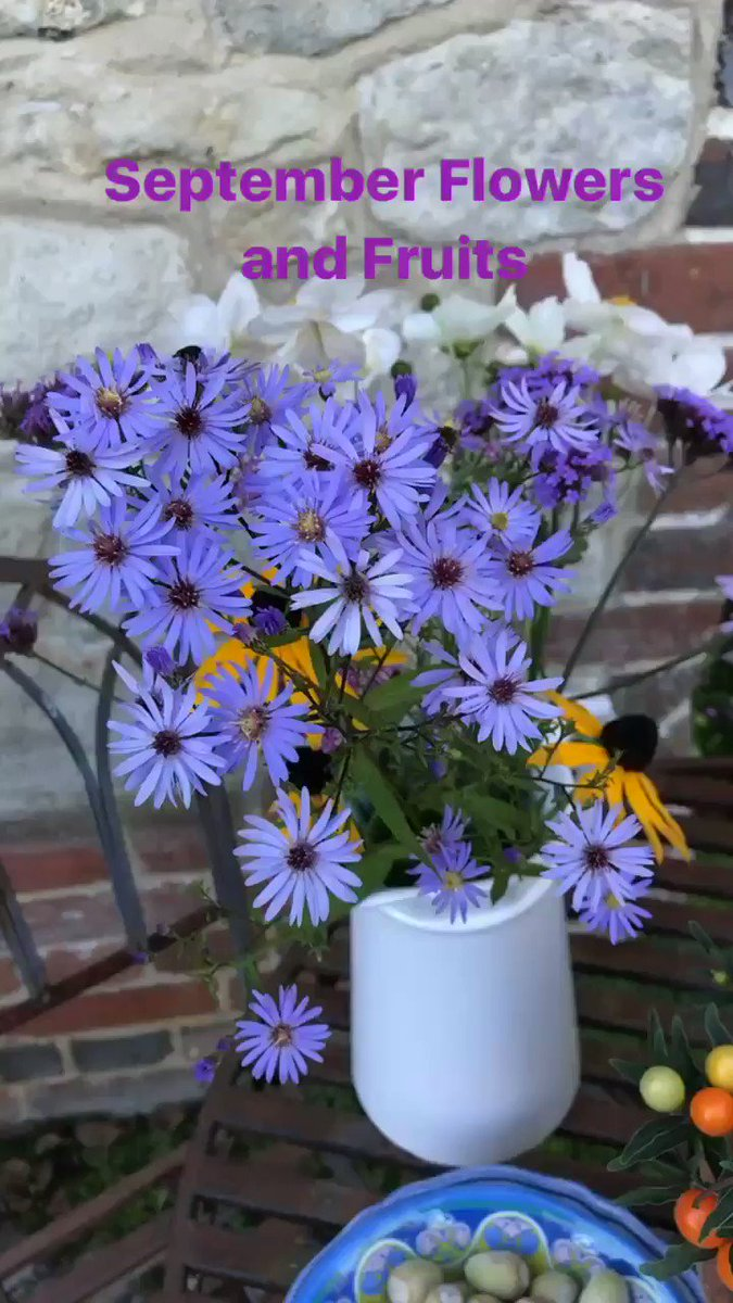 Love Asters and Dahlias in my Garden Today ???? https://t.co/n53gTc0PZX