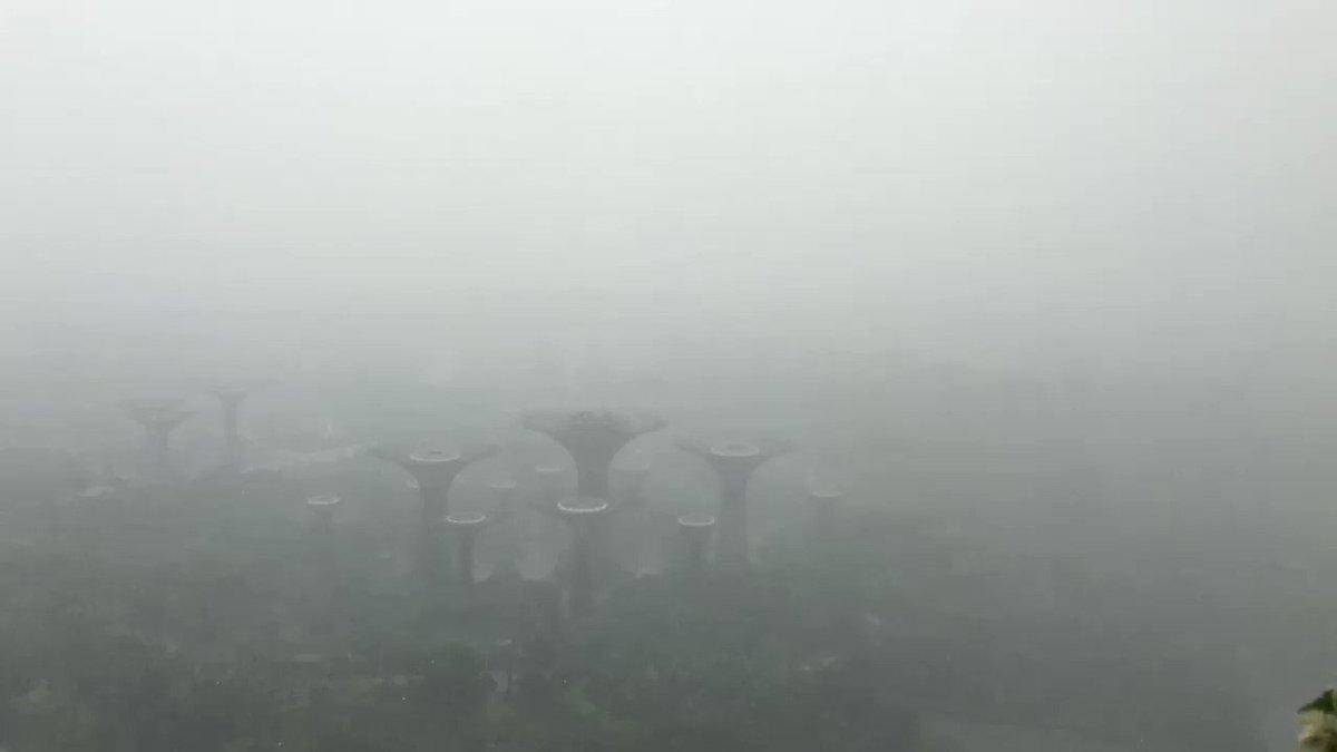Buenos dias!!! Tormenta tropical en Singapur!! ☔️ Good morning tropical storm in Singa! ☔️ https://t.co/SQulv4fNog