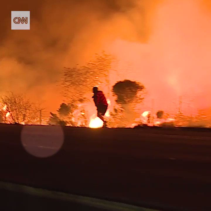 This man braved the California wildfires to save a rabbit from the flames