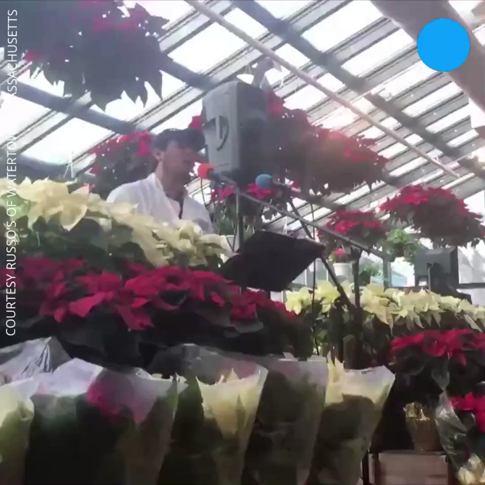 A grocery employee belts out Christmas carols, stunning shoppers.
