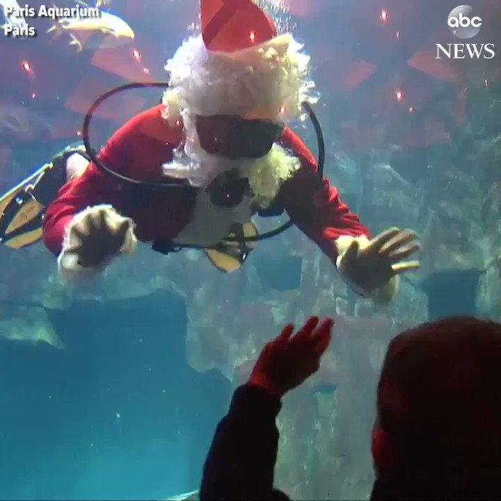 Stunned children watch Santa Claus swim with sharks at the Paris Aquarium.