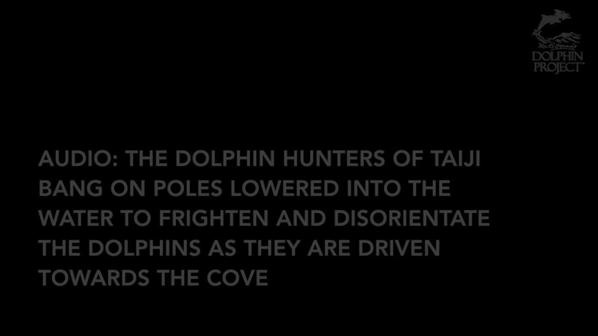 Anatomy of a Slaughter: In Sound. Listen/Share/Take Action: https://t.co/BkupXmhEip #DolphinProject https://t.co/hugtDxX2Ns